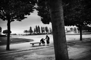 © Kathryn Cook, Memory of trees