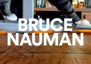 Bruce Nauman, Fondation Cartier